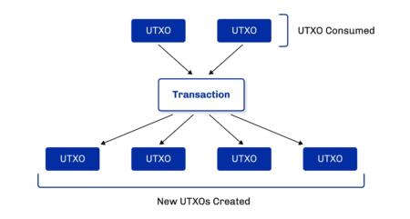 カルダノの拡張UTXO会計モデル – マルチアセットとスマートコントラクトをサポートするために構築(パート2)
